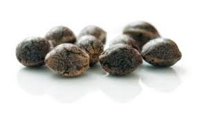 Как выглядят качественные семена