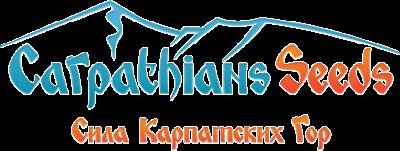 Новые сорта от CarpathiansSeeds!