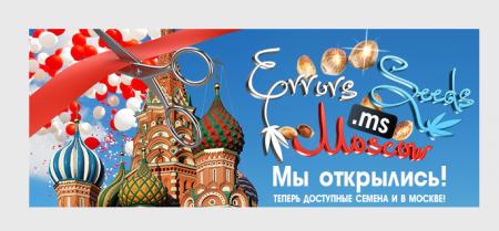 Errors Seeds теперь и в Москве!
